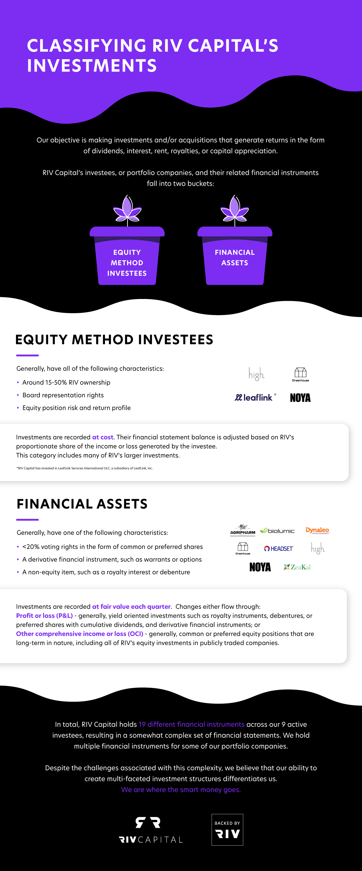 Infographic classifying Canopy Rivers' investment buckets, financial assets and instruments.